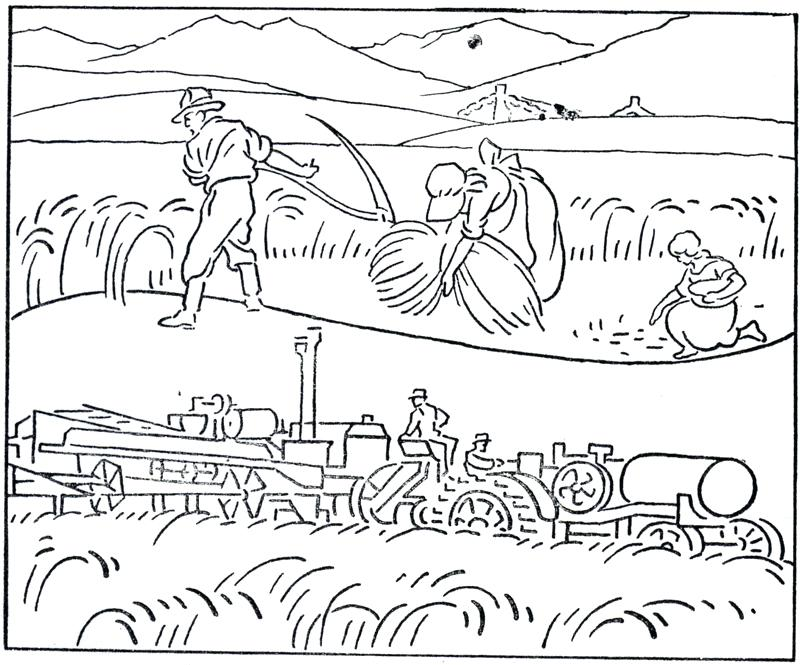 800x665 Harvest Coloring Pictures Thanks Harvest Coloring Page Harvest