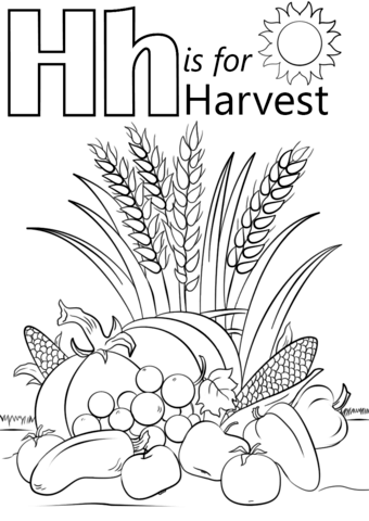 340x480 Letter H Is For Harvest Coloring Page Free Printable Coloring Pages