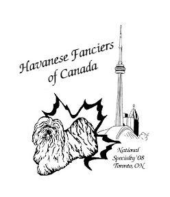 248x288 Havanese Fanciers Specialty 2008 Havanese Fanciers Of Canada