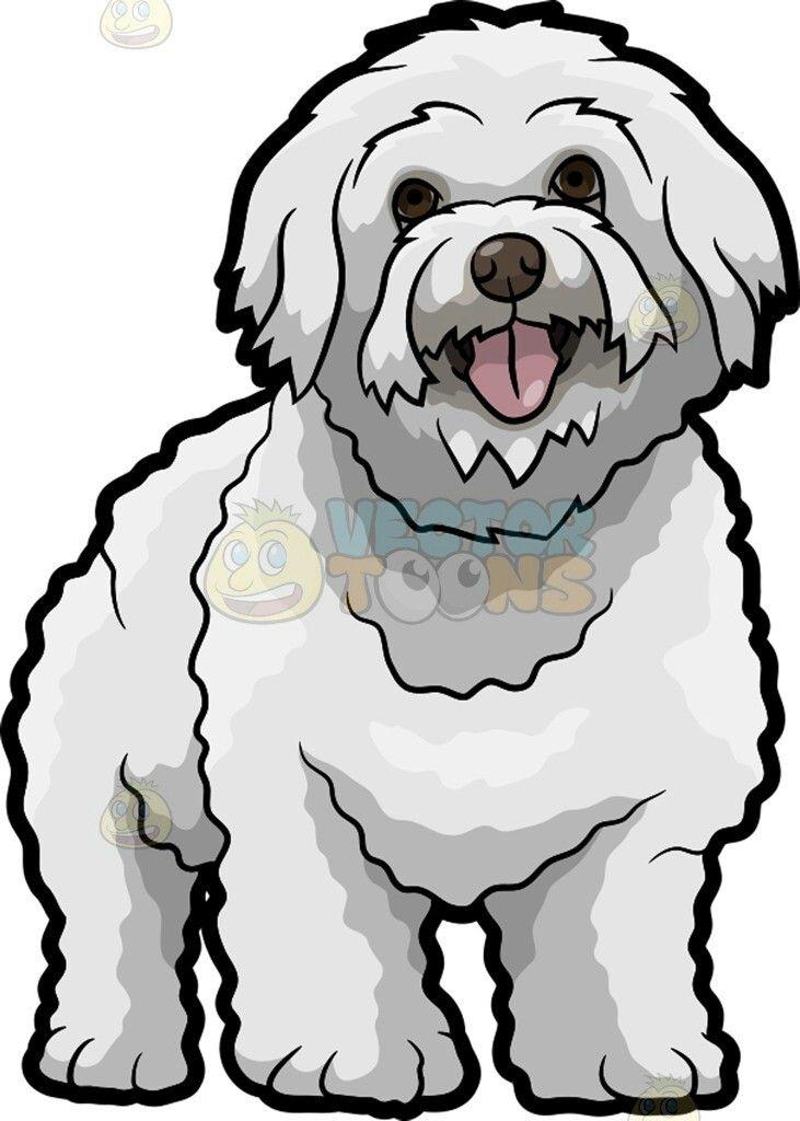 731x1024 149 Best Mascotas