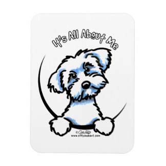 324x324 Maltese Puppy Refrigerator Magnets Zazzle