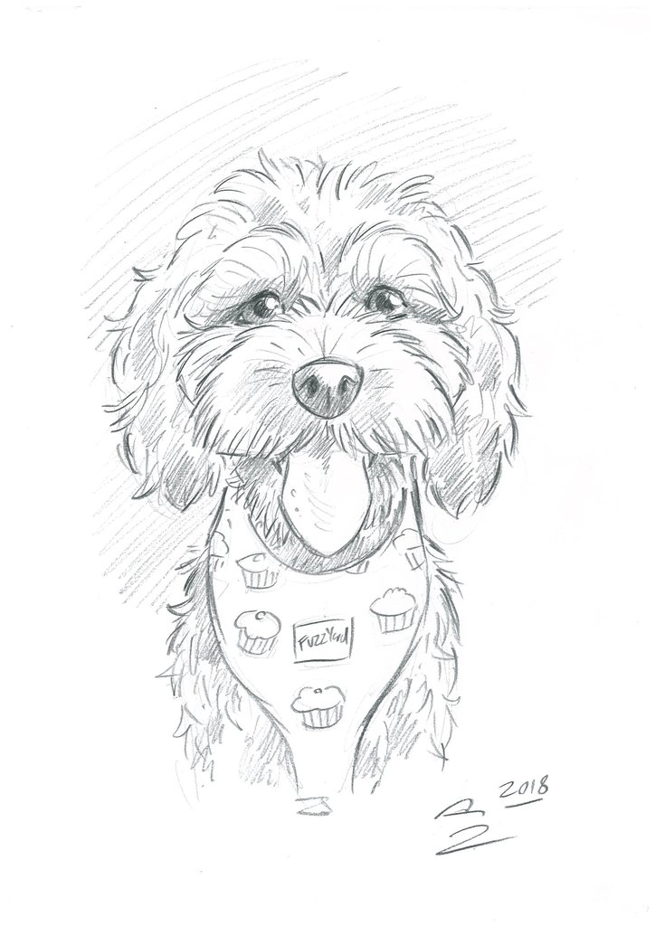 724x1024 Pet Portrait