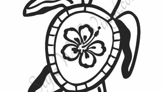 570x320 Hawaiian Flower Drawing