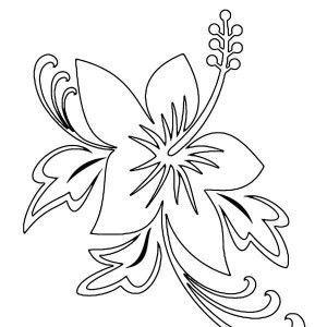 300x300 Flower Outline Coloring Page Flower Outline Coloring Page Kids