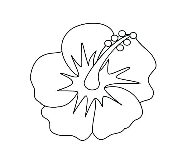 600x514 Hawaiian Flower Coloring Pages Coloring Pages To Print An Flower