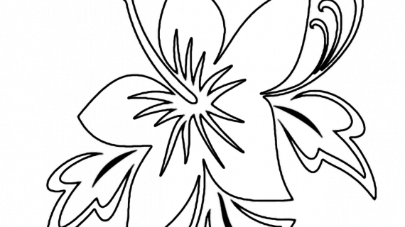 570x320 Hawaiian Flower Drawing Hawaiian Flower Coloring Pages