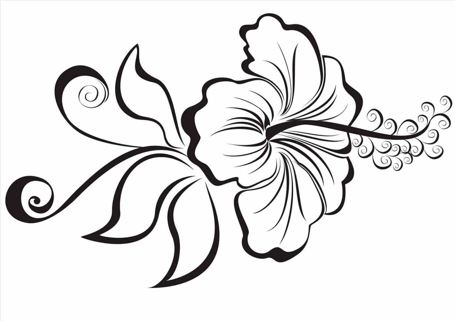 Hawaii flower drawing at getdrawings free for personal use 1501x1059 ways to draw a cartoon hibiscus wikihow easy hawaiian flowers izmirmasajfo