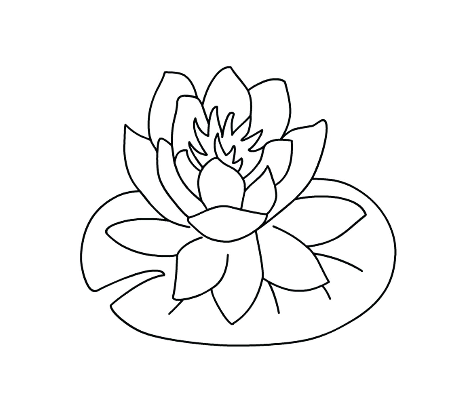 1631x1398 Coloring Hawaiian Flowers Coloring Pages Flower Drawing Hawaii