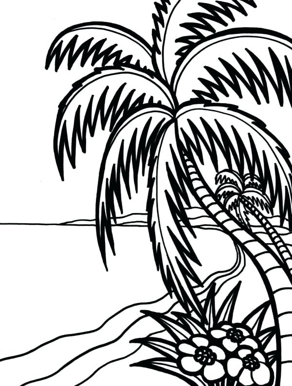 600x794 Hawaii Coloring Page Two Dolphins Coloring Page Hawaii Coloring