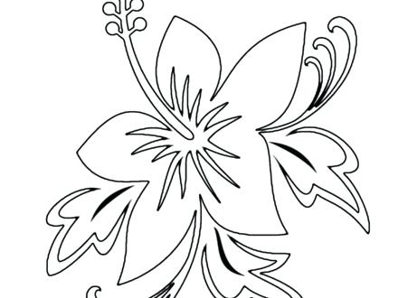 440x330 Hawaiian Flowers Coloring Pages Synthesis.site