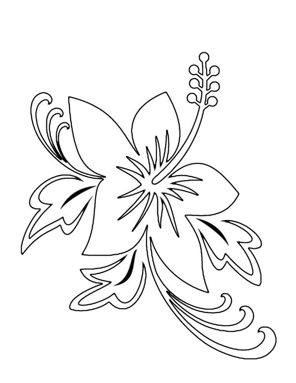 600x776 Beautiful Hawaii State Flower Hibiscus Flower Coloring Page