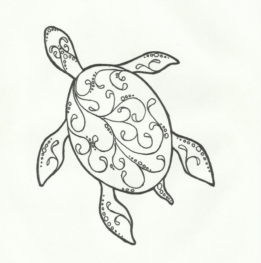 1018x1024 Drawings Of Turtles Excellent Images For Hawaiian Turtle Drawings
