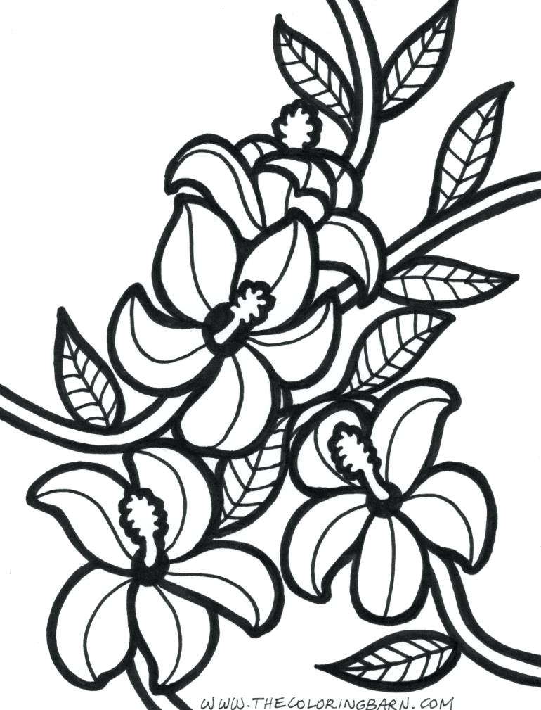770x1009 Here Are Hawaiian Coloring Pages Pictures Free Coloring Pages