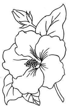 236x354 Drawn Hibiscus Hawaiian Flower
