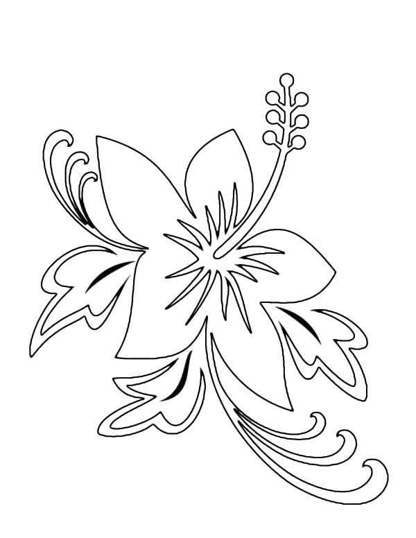 600x776 Hawaiian Flower Coloring Pages Hibiscus Flower Picture Coloring