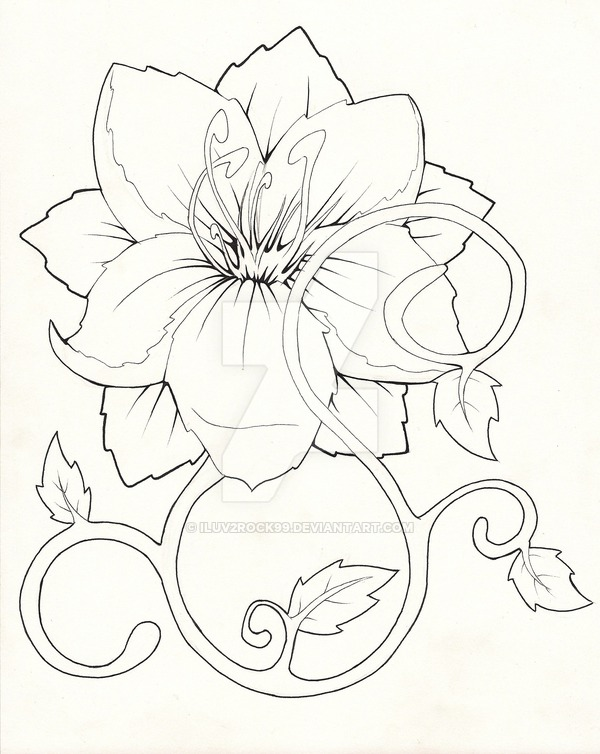 600x754 Tropical Flowers Drawing