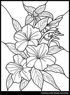236x319 Hawaiian Flower Christmas Flower Drawing Merry Christmas Amp Happy