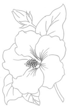 236x354 Drawn Hibiscus Embroidery