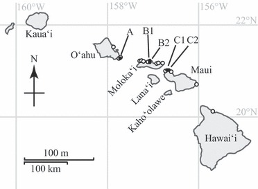 372x273 Map Of The Hawaiian Islands, Showing The Sampling Sites Used