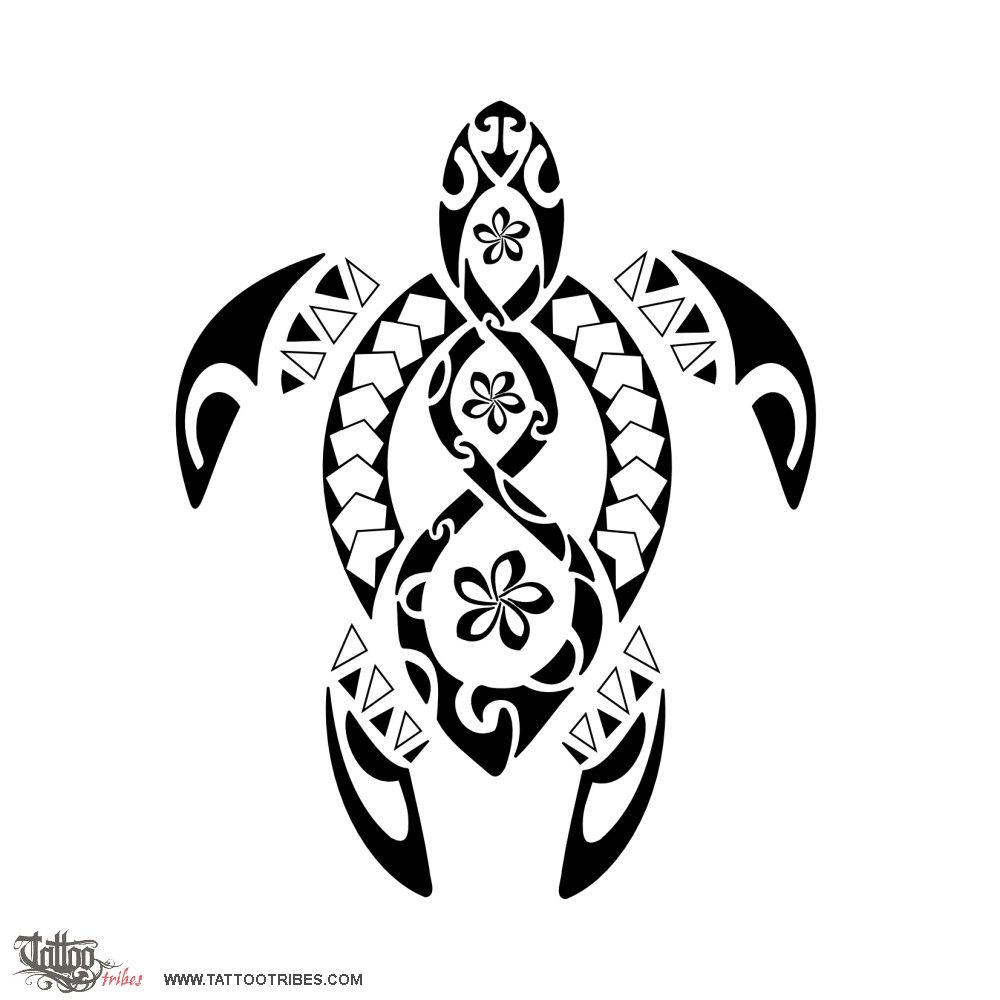 1000x1000 20 Traditional Samoan Tattoo Designs And Meanings Turtle, Tattoo
