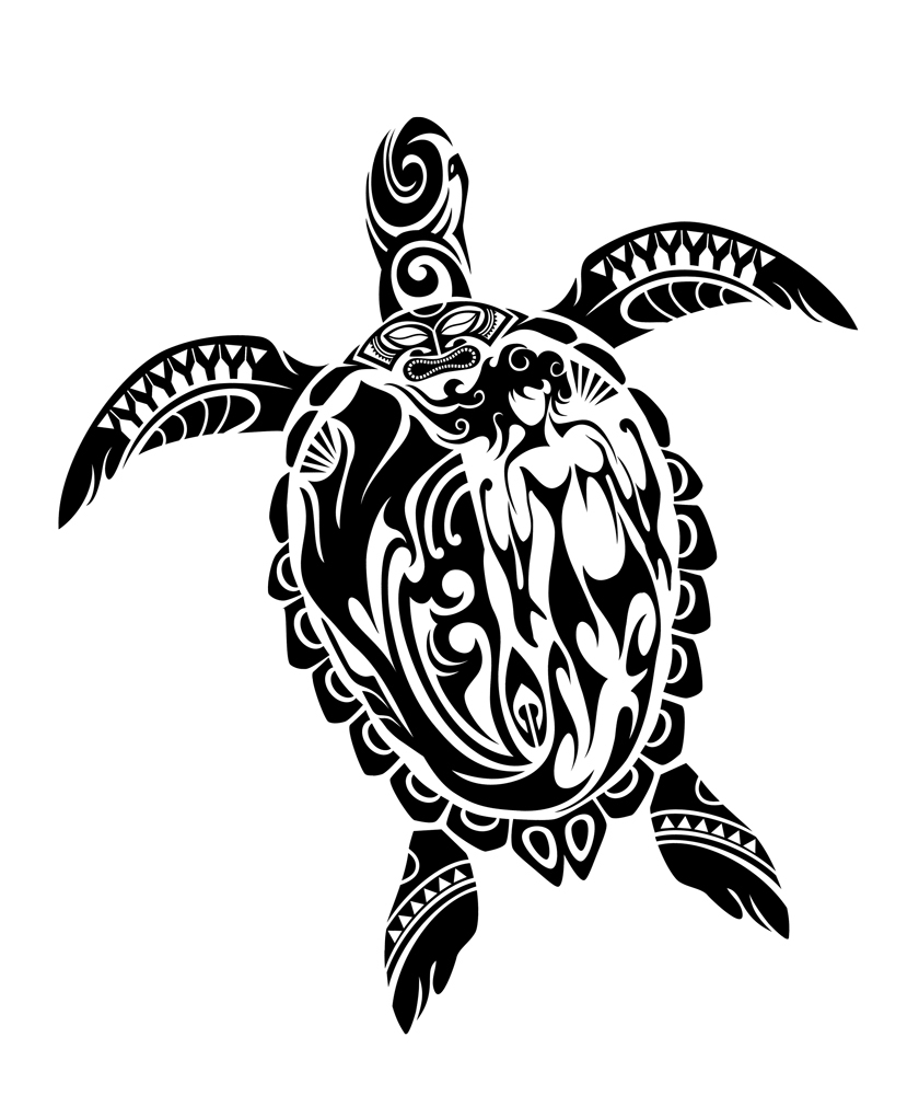hawaiian sea turtle drawing at free for personal use hawaiian sea turtle. Black Bedroom Furniture Sets. Home Design Ideas