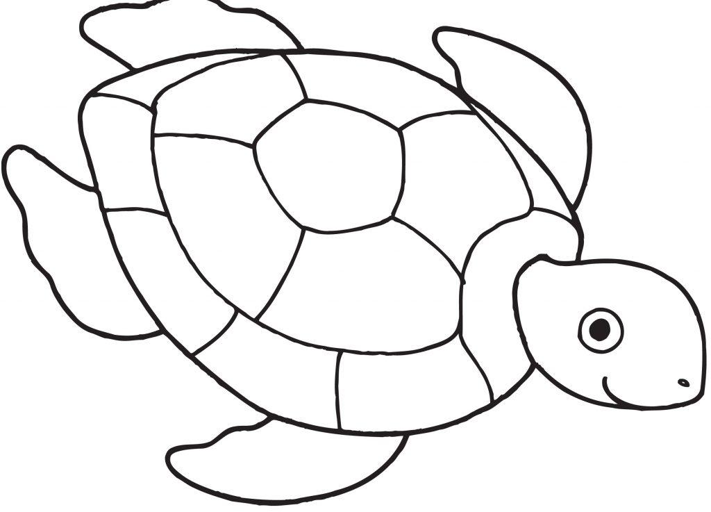 1024x737 Hawaiian Turtle Coloring Pages New Turtles Hawaiian Green Sea
