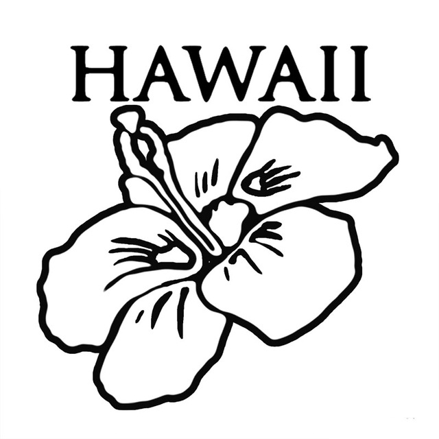 Hawaiiflower Drawing