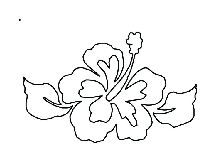 736x552 Hawaii Flower Coloring Pages From Hibiscus Printable