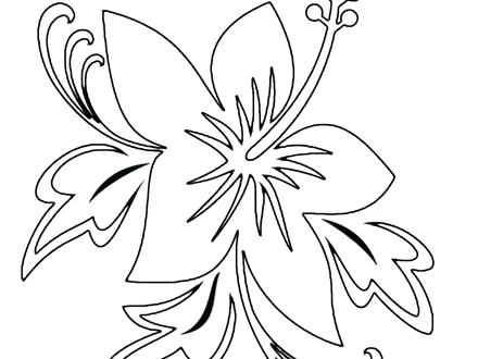 440x330 Hawaii Flower Coloring Pages Printable Flowers S
