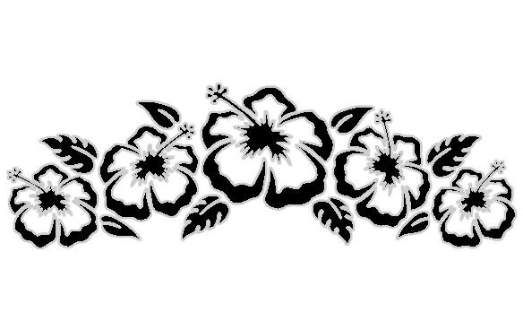 584x368 Hawaii Flower Drawing