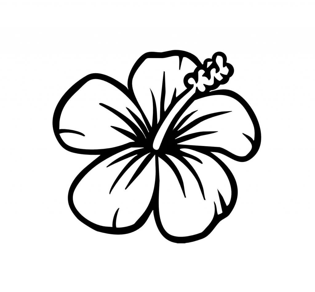 1024x950 Hawaiian Flower Drawing Hawaiian Flower Coloring Pages