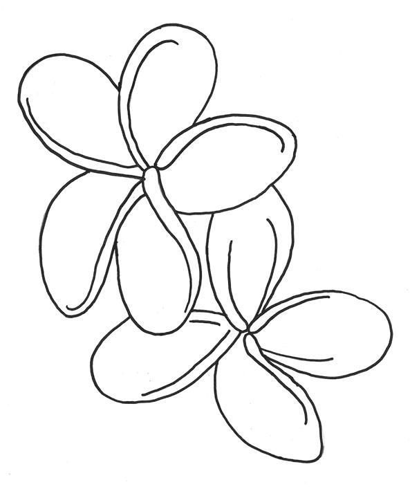 593x720 Hawaiian Flowers I Could Paint This Hawaiian