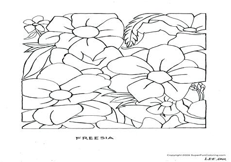 476x333 Hawaiian Flowers Coloring Pages Girl Coloring Pages Terrific Page