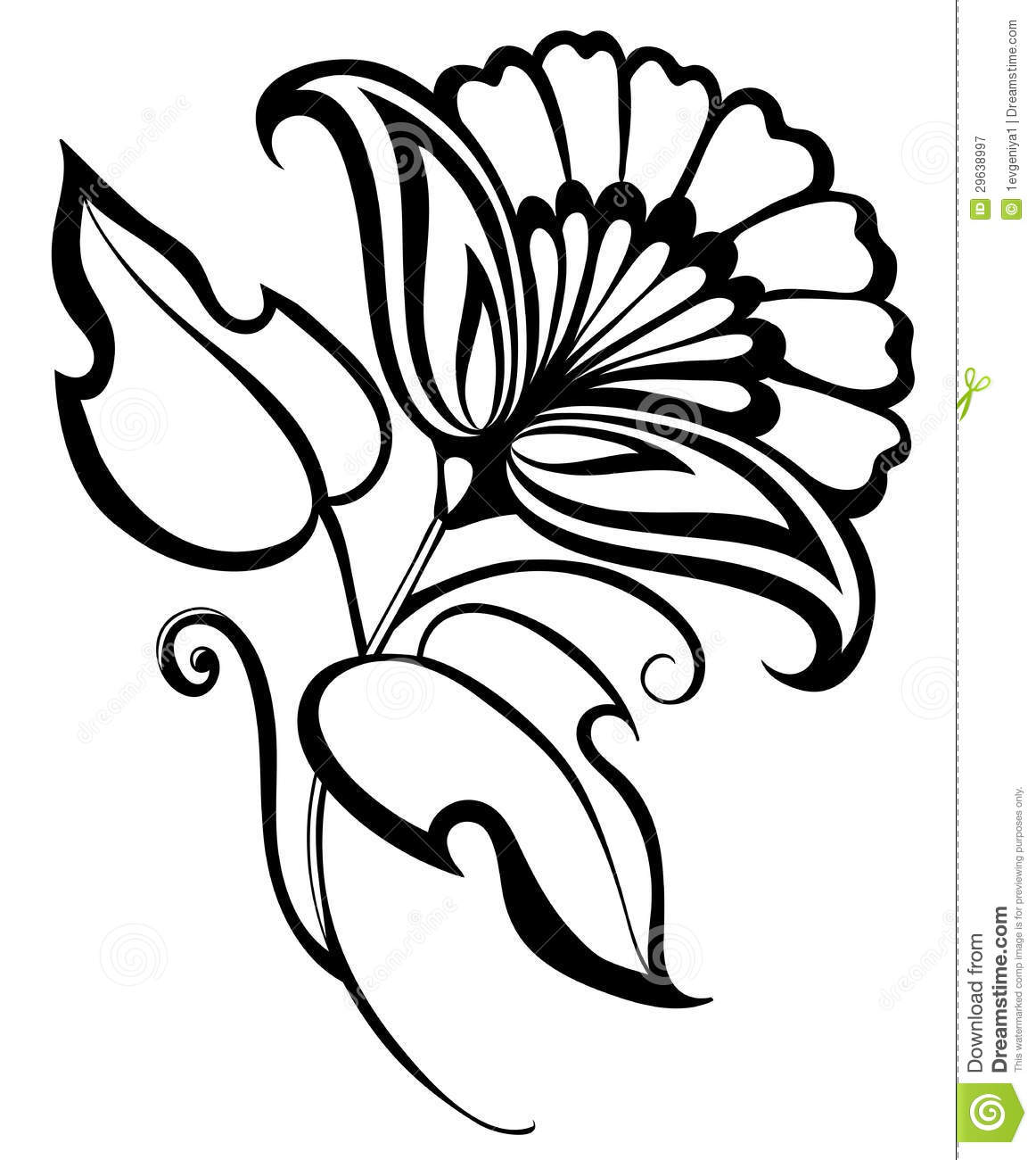 1162x1300 Beautiful Black White Flower Hand Drawing Floral Design Element
