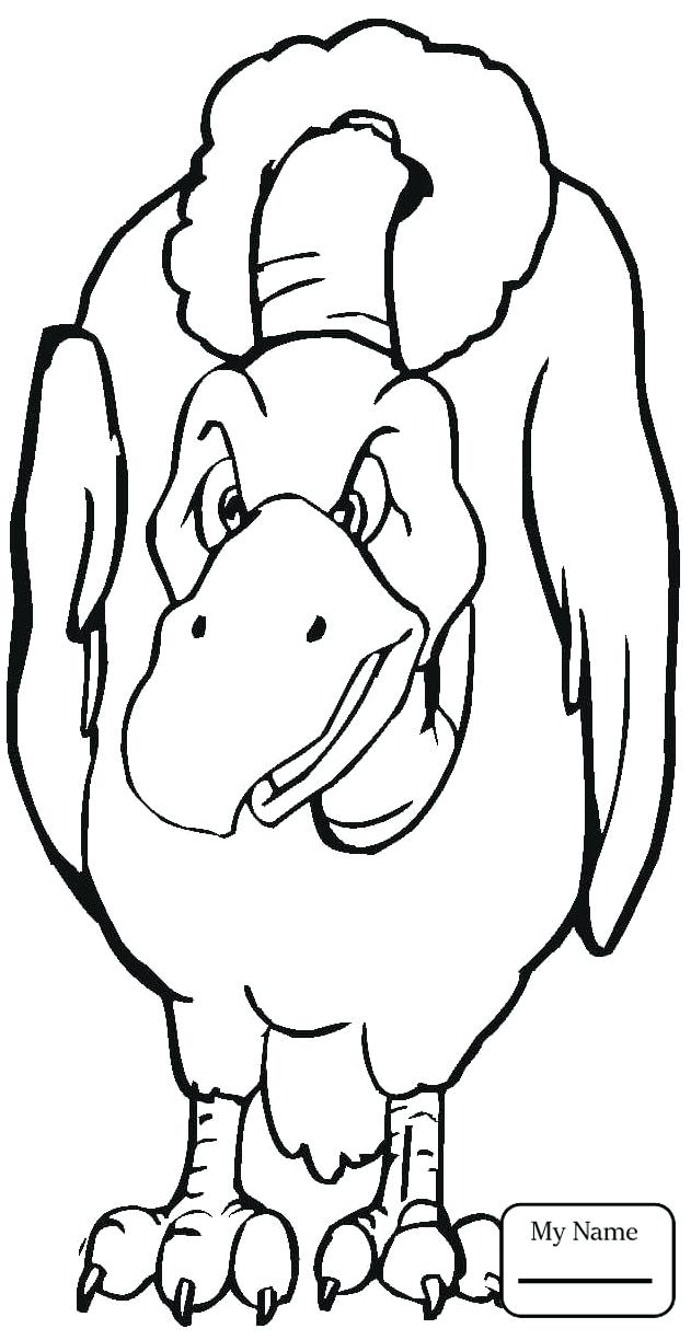 631x1224 Coloring Pictures Of Birds Flying Coloring Pages Birds Realistic