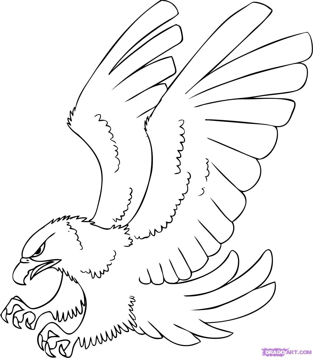 1206x1380 Free Hawk Images To Draw A Cartoon Hawk, Step By Step, Cartoon