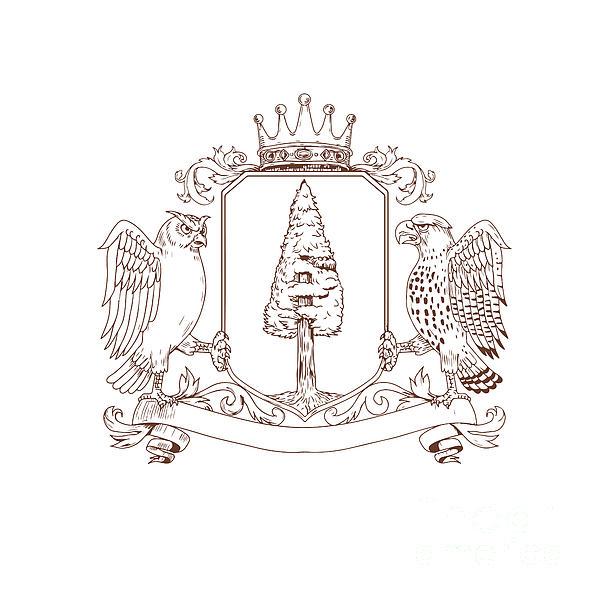 600x600 Owl And Hawk Redwood Crown Crest Drawing Digital Art By Aloysius