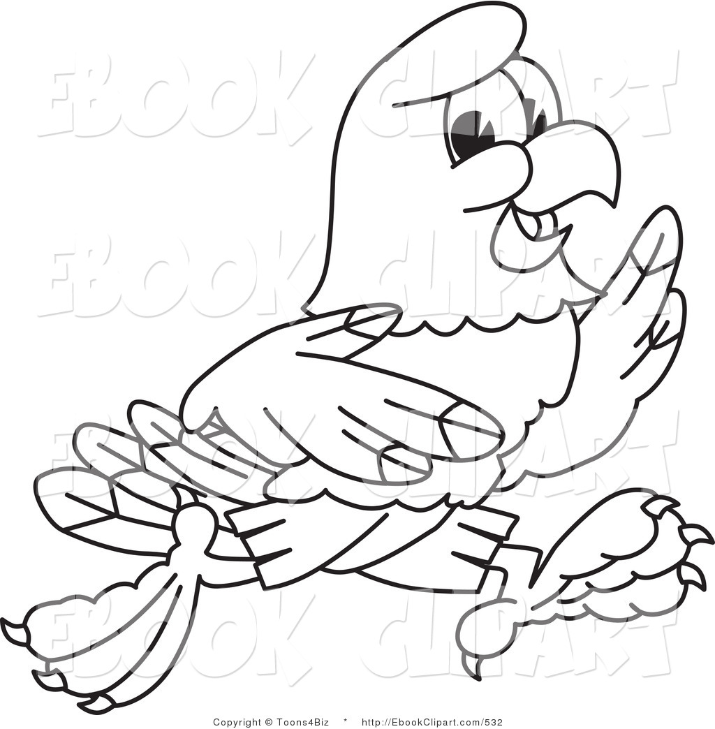 1024x1044 Hawk Clipart Draw