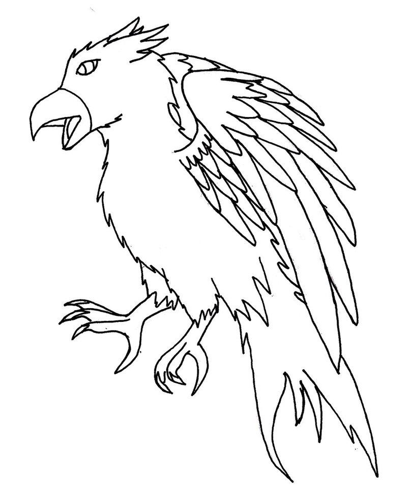 806x991 Hawk Lineart Male By Sirenarose034