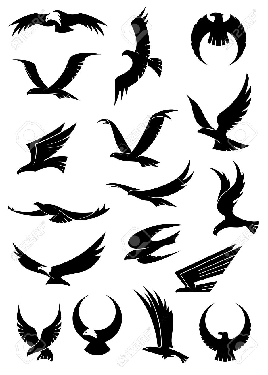 932x1300 Flying Eagle, Falcon And Hawk Icons Showing Different Wing