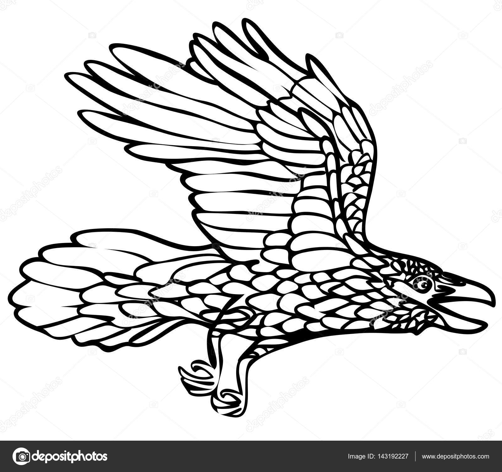 1600x1505 Vector Illustration Of Flying Raven Black And White Stock Vector
