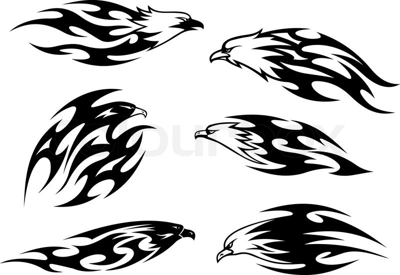 800x551 Black And White Flying Eagles, Falcons And Hawks In Tribal Style
