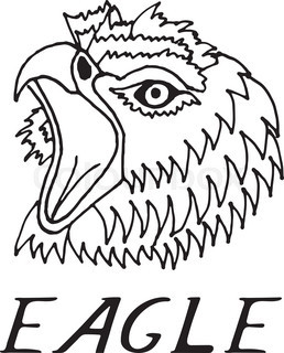 258x320 Hand Draw Hawk Head In The Style Of The Sketch, On Black And White
