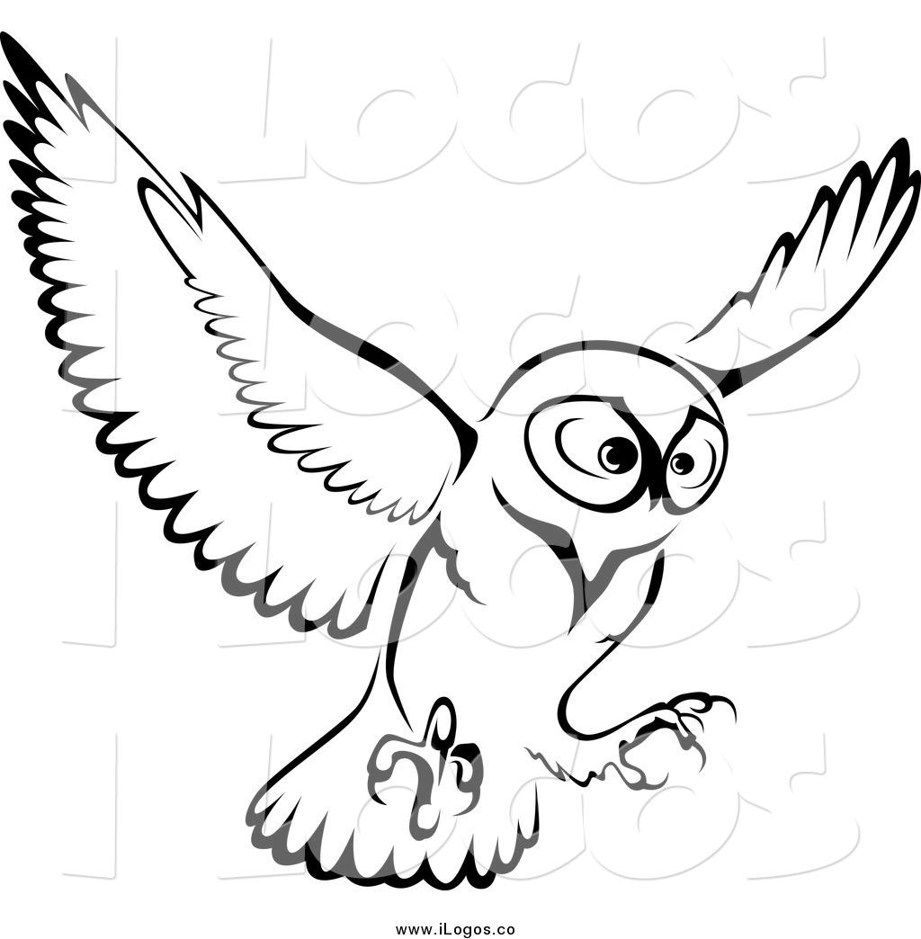 1024x1044 Brown Hawk Owl Clipart Flight Drawing