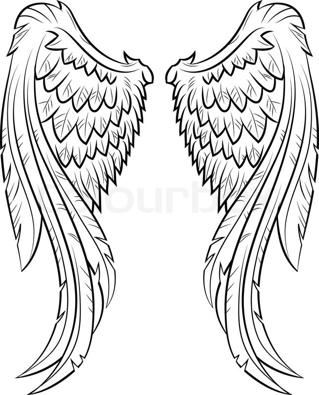 646x800 Wings Stock Vector Colourbox