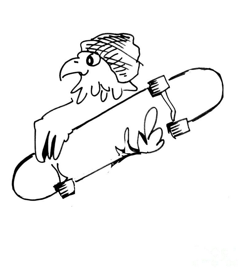 814x900 Drawings Of Hawks