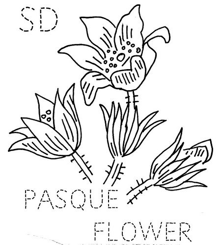 450x500 South Dakota Pasque Flower South Dakota, Flower And Embroidery