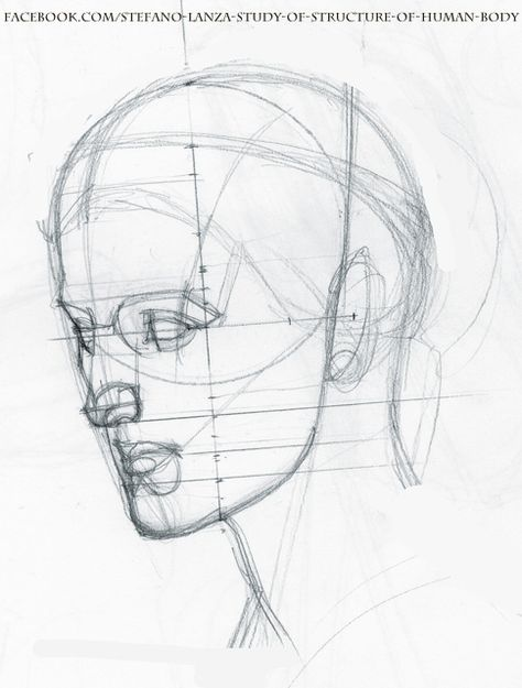 474x625 How To Draw Comics How To Draw Head Portraits 1 Tegne