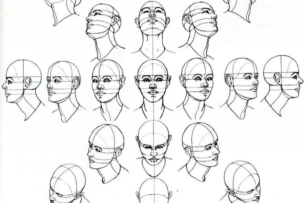 1024x682 Gallery Drawing Face At Angle,