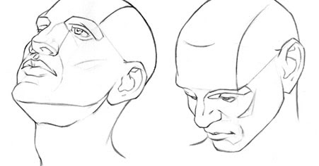 451x236 Learning To Draw Human Head